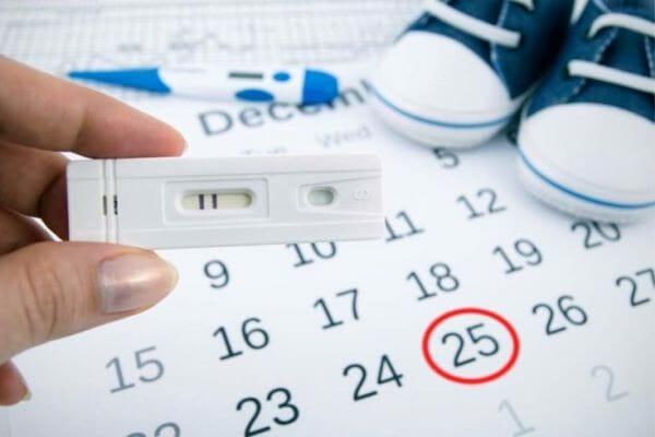 Тест и календарь