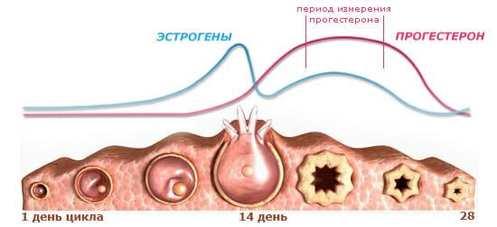 Изменение уровня прогестерона