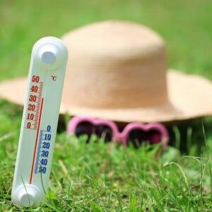 Градусник и шляпа на траве