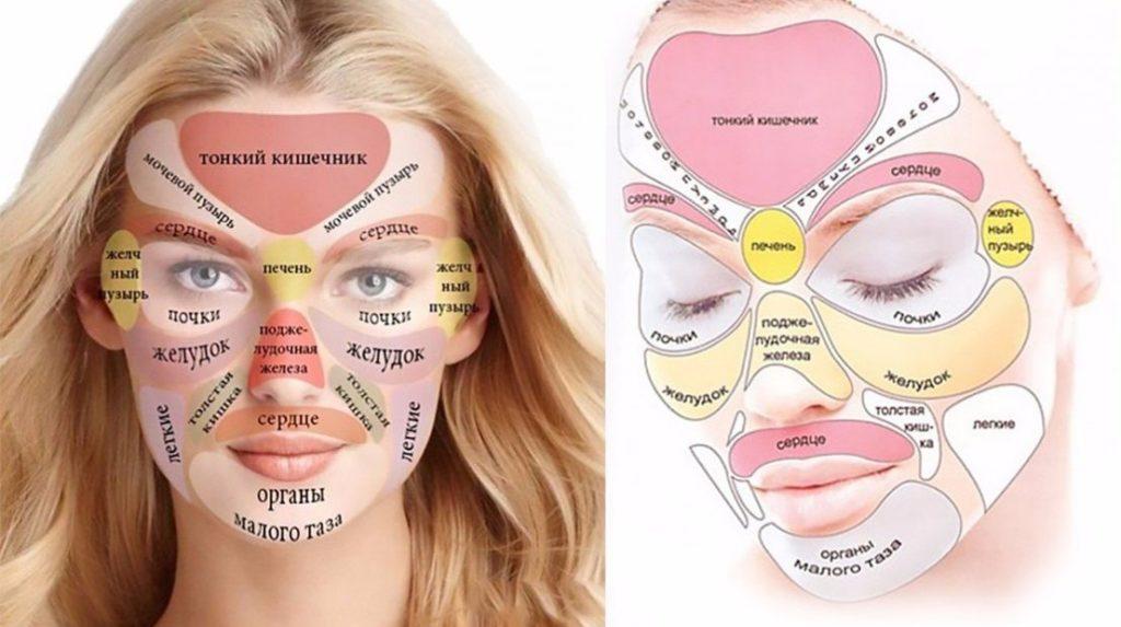 Зоны органов на лице